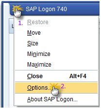 sap-logon-options